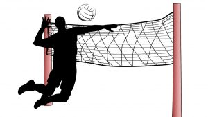 Volleyball Smash and Net