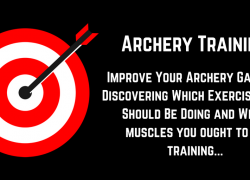 Training for Archery: What Muscles Should You Train?